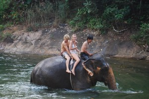 Swimming with elephants on Koh Chang Thailand