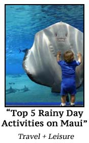 Top 5 Rainy Day Activities on Maui