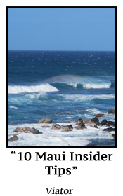10 Maui Insuider Tips
