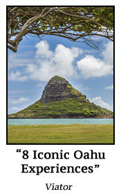 8 Iconic Oahu Experiences