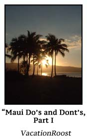 Mauis Dos and Donts 1