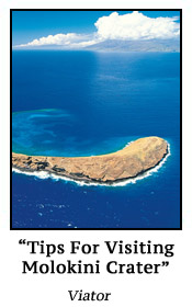 Tips For Visiting Molokini Crater
